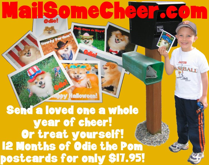 MailSomeCheer.com, send a year of cheer; 12 months of Odie the Pom postcards for only $17.95!